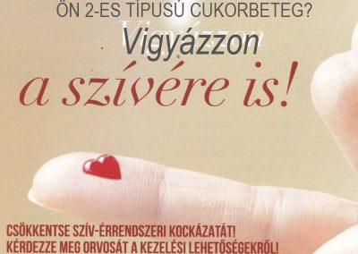 2-es típusú cukorbeteg? Gondoljon a szívére! – Dr. Menyhárt Orsolya kardiológus cikke